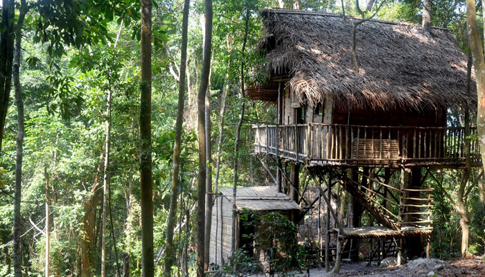 Kulai Rainforest Tree House