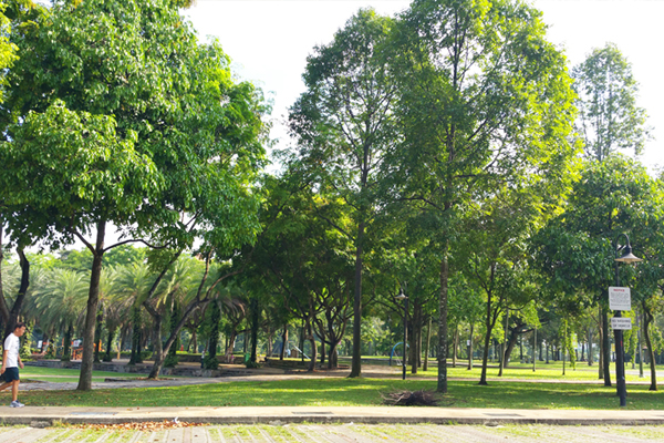 Malay Wedding Venue - Choa Chu Kang Park